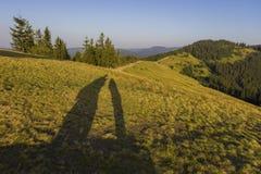 Auf einem sonnigen Sommertag, auf der Ansicht von der Hochebene zum Wald und auf den Bergen Blauer Himmel, viele grünes Gras und  Lizenzfreie Stockfotografie