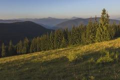Auf einem sonnigen Sommertag, auf der Ansicht von der Hochebene zum Wald und auf den Bergen Blauer Himmel, viele grünes Gras und  Lizenzfreie Stockfotos