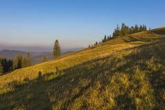 Auf einem sonnigen Sommertag, auf der Ansicht von der Hochebene zum Wald und auf den Bergen Blauer Himmel, viele grünes Gras und  Stockbilder