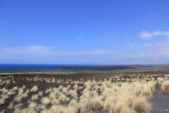 Auf einem Strand Sea Sand schaukelt Hawaii-Natur sonniges Palmepool Stockbild