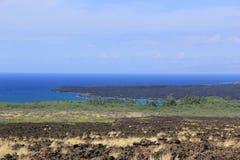 Auf einem Strand Sea Sand schaukelt Hawaii-Natur sonniges Palmepool lizenzfreies stockfoto