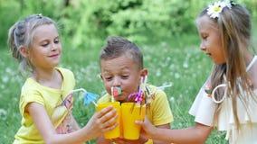 Auf einer Kamillenwiese nahe einem Wald, auf dem Gras, gibt es drei Kinder auf einem gelben Plaid, sie trinken süße Getränke stock video