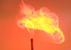 Auf Feuer Lizenzfreie Stockbilder