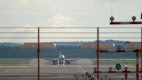 Auf Hintergrund des blauen Himmels stock footage