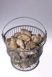 Auf Lager Sie Foto der Austern in der Wanne Stockbild