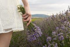 Auf Lavendelfeldmädchen im weißen Kleid, das Blumenstrauß hält Lizenzfreie Stockbilder