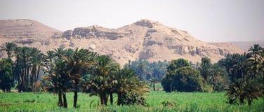 Auf Nile River kreuzen, die Landschaft, Süd-Ägypten lizenzfreies stockfoto