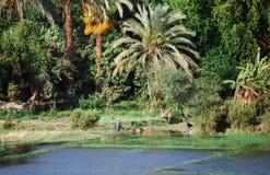 Auf Nile River kreuzen, die Landschaft, Süd-Ägypten lizenzfreie stockbilder