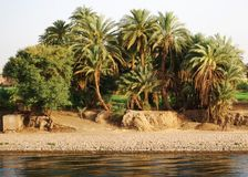 Auf Nile River kreuzen, die Landschaft, Süd-Ägypten stockbild