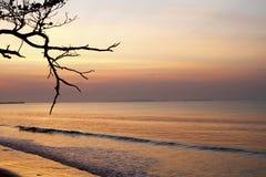 Auf Strand lizenzfreies stockbild