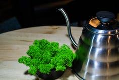 Auf Tabellenlügentopf für Vorbereitung des Kaffees durch eine alternative Methode und dem dekorativen grünen Moos steht in der Nä stockfoto