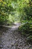 Auf Turner Reservoir Loop Trail Lizenzfreies Stockfoto