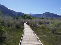 Auf unserer Weise zum Monosee, Tuff Lizenzfreies Stockfoto