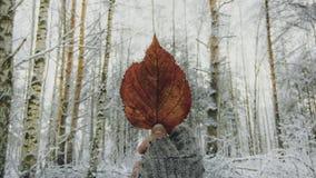 Auf Wiedersehen, Herbst Stockfoto