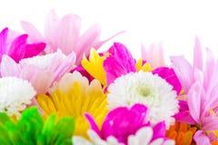 Aufbau mit Blumen. Stockbild