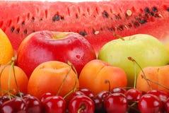 Aufbau mit Früchten Stockbilder