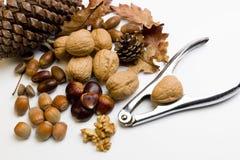 Aufbau mit herbstlichen Früchten und Nussknackern Lizenzfreie Stockbilder