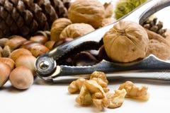 Aufbau mit herbstlichen Früchten und Nussknackern Stockfoto