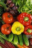 Aufbau mit rohem Gemüse Stockfoto