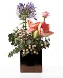 Aufbau von den Blumen Stockfotografie
