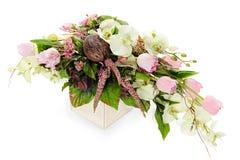 Aufbau von den Orchideen, Tulpen, Kokosnuss, Felsen lizenzfreies stockbild