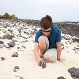 Aufbauen eines Steinhaufens Lizenzfreie Stockfotografie