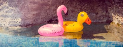 Aufblasbarer rosa Flamingo und gelbe Ente spielt im Pool lizenzfreie stockfotos