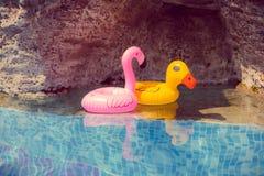 Aufblasbarer rosa Flamingo und gelbe Ente spielt im Pool lizenzfreies stockfoto