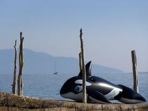 Aufblasbarer Wal, der nahe Meer stillsteht Stockfotos