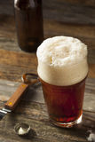 Auffrischungsbrown Ale Beer Lizenzfreie Stockfotos