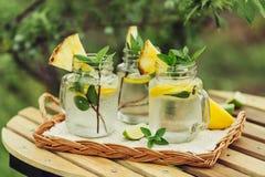 Auffrischungsgekühltes Zitronenwasser Lizenzfreies Stockfoto