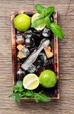 Auffrischungsmojito cocktail des Sommers Lizenzfreie Stockbilder
