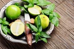 Auffrischungsmojito cocktail des Sommers Lizenzfreies Stockbild