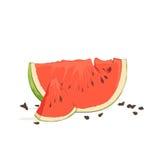 Auffrischungswassermelonenstücke Stockfotos