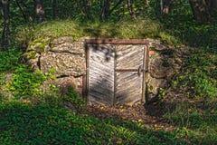 Aufgegebene alte Tür in der Steinwand abgedeckt durch Vegetation lizenzfreies stockfoto