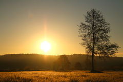 Aufgehende Sonne in Polen Lizenzfreies Stockfoto