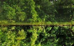 Aufgehobene Reflexion im Fluss Lizenzfreies Stockbild