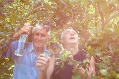 Aufgeregte Senioren mit Alkohol unter dem Pflaumenbaum Stockbilder