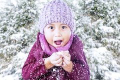 Aufgeregter Junge, der Schnee unter Kiefer spielt Stockfoto