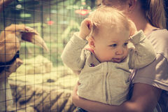 Aufgeregtes lustiges Baby mit Mutter machen Gesichter im Zoo Lizenzfreies Stockfoto