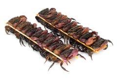 Aufgespießte Krabben für das Essen stockfotografie