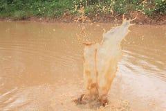 Aufgeteilte schlammige Wasserblasen stockfoto