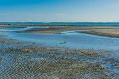 Aufgeteilter Ozean auf der Strandwasserlandschaft Stockbild