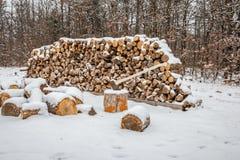Aufgeteiltes Holz im Winter Stockbild