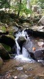 Aufgeteiltes Wasserfallhetzen Stockbild