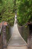 Aufhebung-Brücke Stockbild