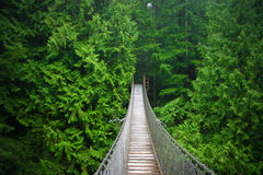 Aufhebung-Brücke lizenzfreie stockbilder