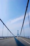 Aufhebungbrücke in Dänemark, vertikal Lizenzfreie Stockbilder