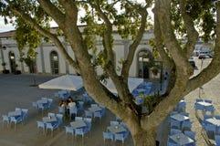 Aufholen auf einer Terrasse in Portugal stockbilder