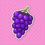 Aufkleber ein Weintraube mit runden purpurroten Beeren stock abbildung